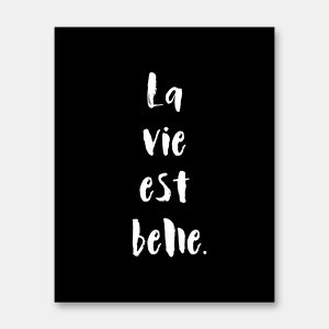 La vie est belle french quote