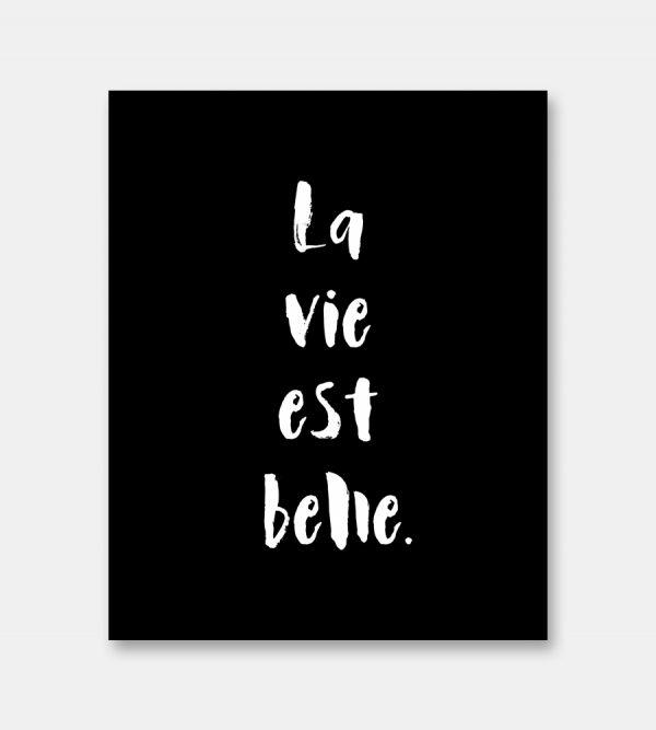 La vie est belle french quote